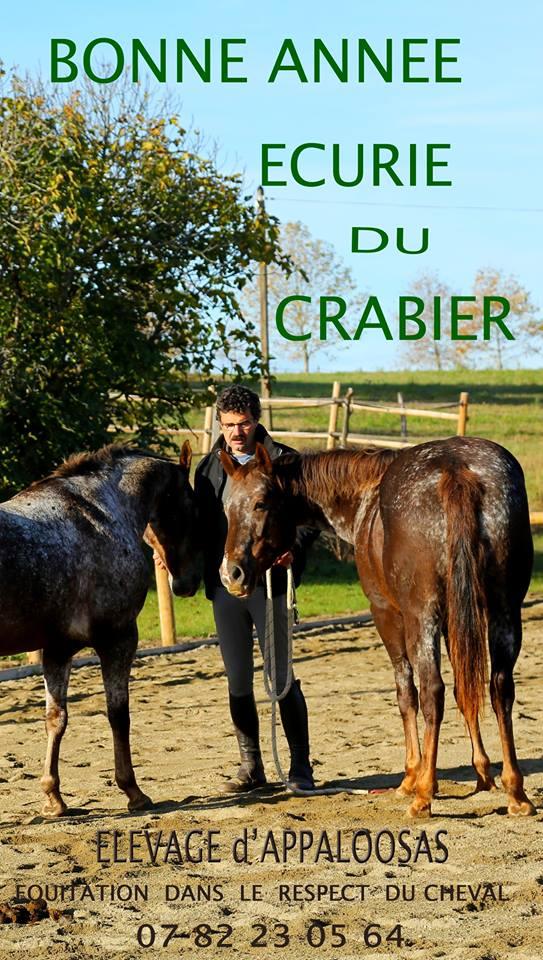 Ecurie du Crabier